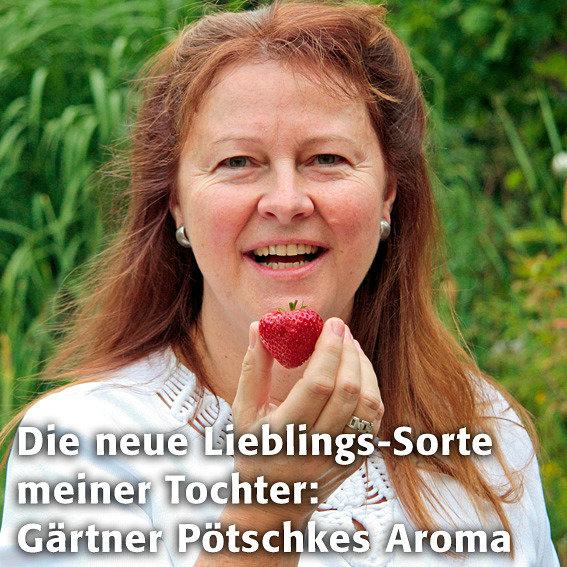 Erdbeerpflanze Gärtner Pötschkes Aroma-Erdbeere, getopft | #2