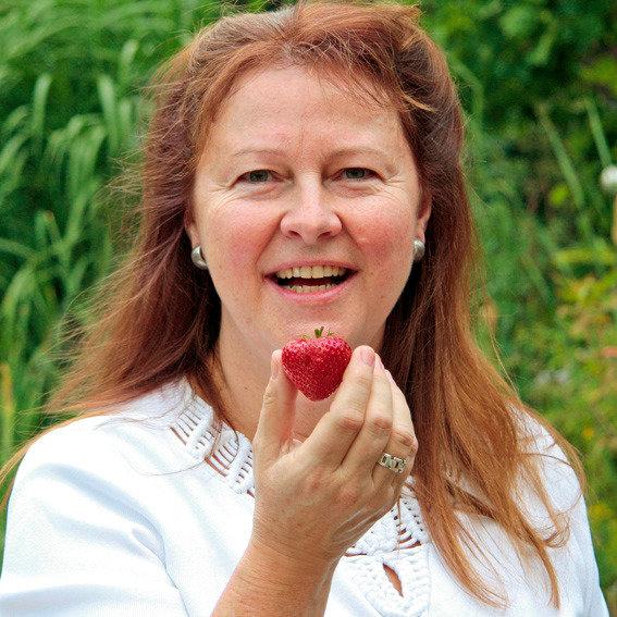 Erdbeerpflanze Gärtner Pötschkes Gourmet, getopft | #2