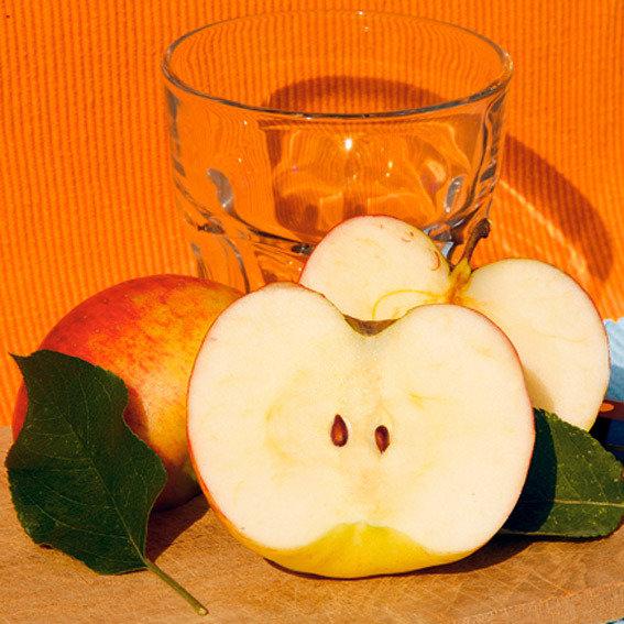 Apfel Topaz(S) | #2