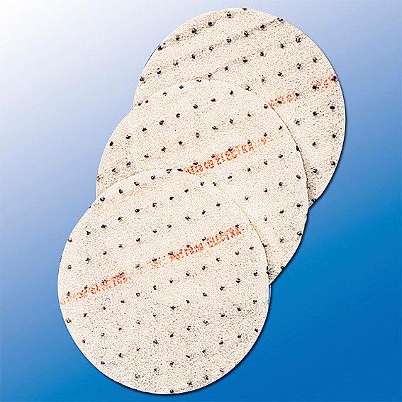 Saatscheiben Basilikum Aton, 10 cm Durchmesser | #3