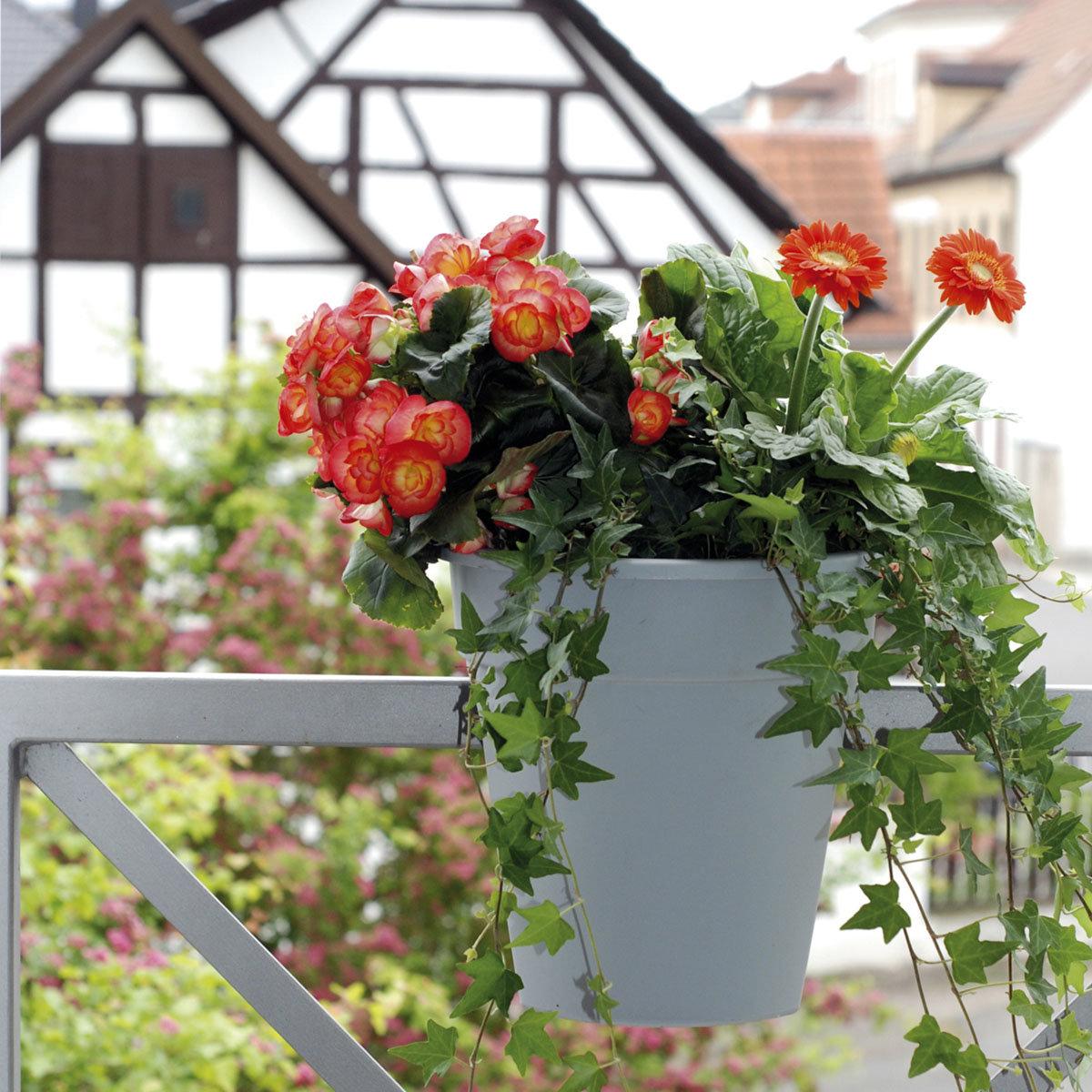 Geländertopf Flowerclip, 27,5 cm, grau | #3