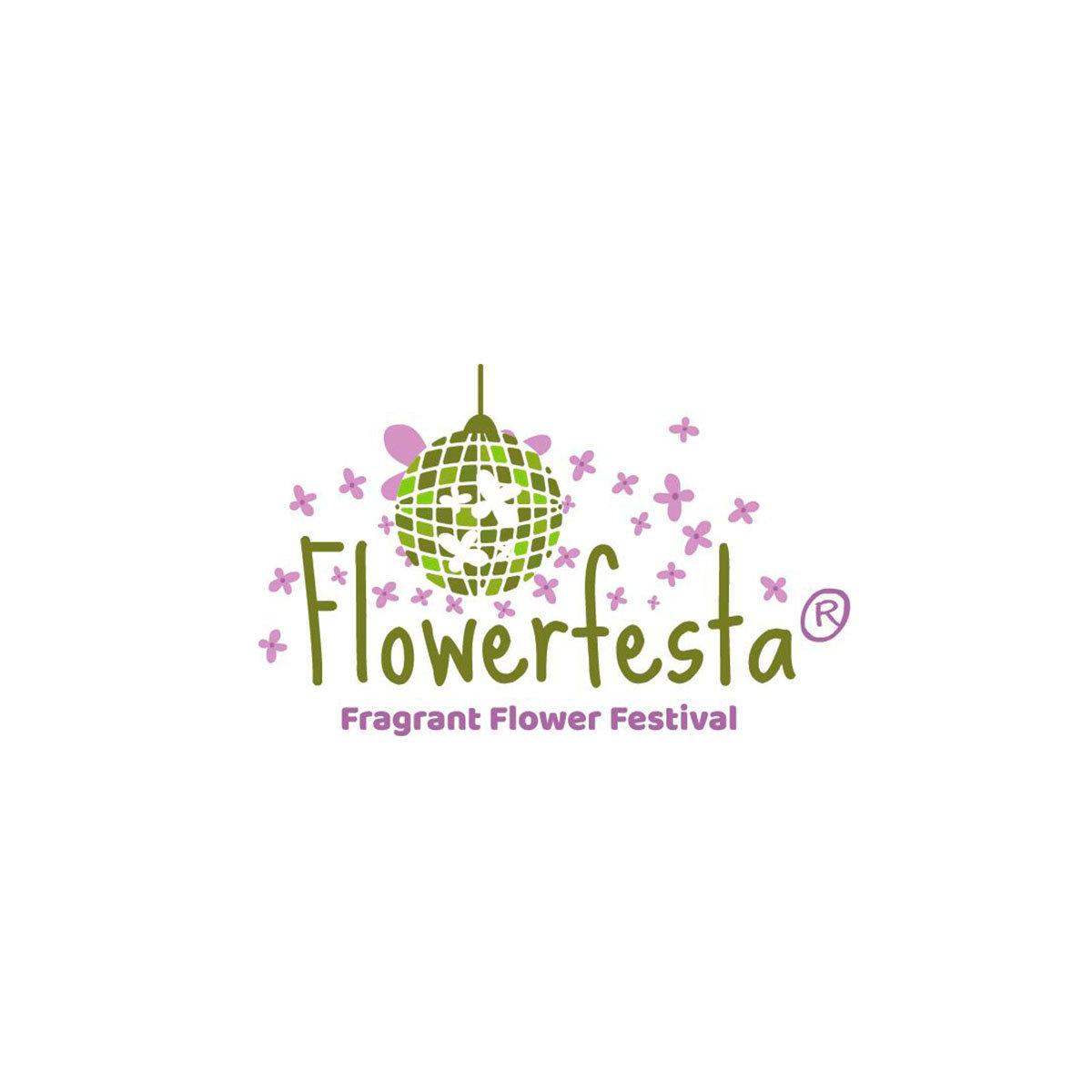 Zwerg Duftflieder Flowerfesta®  Purple, im ca. 19 cm-Topf | #3