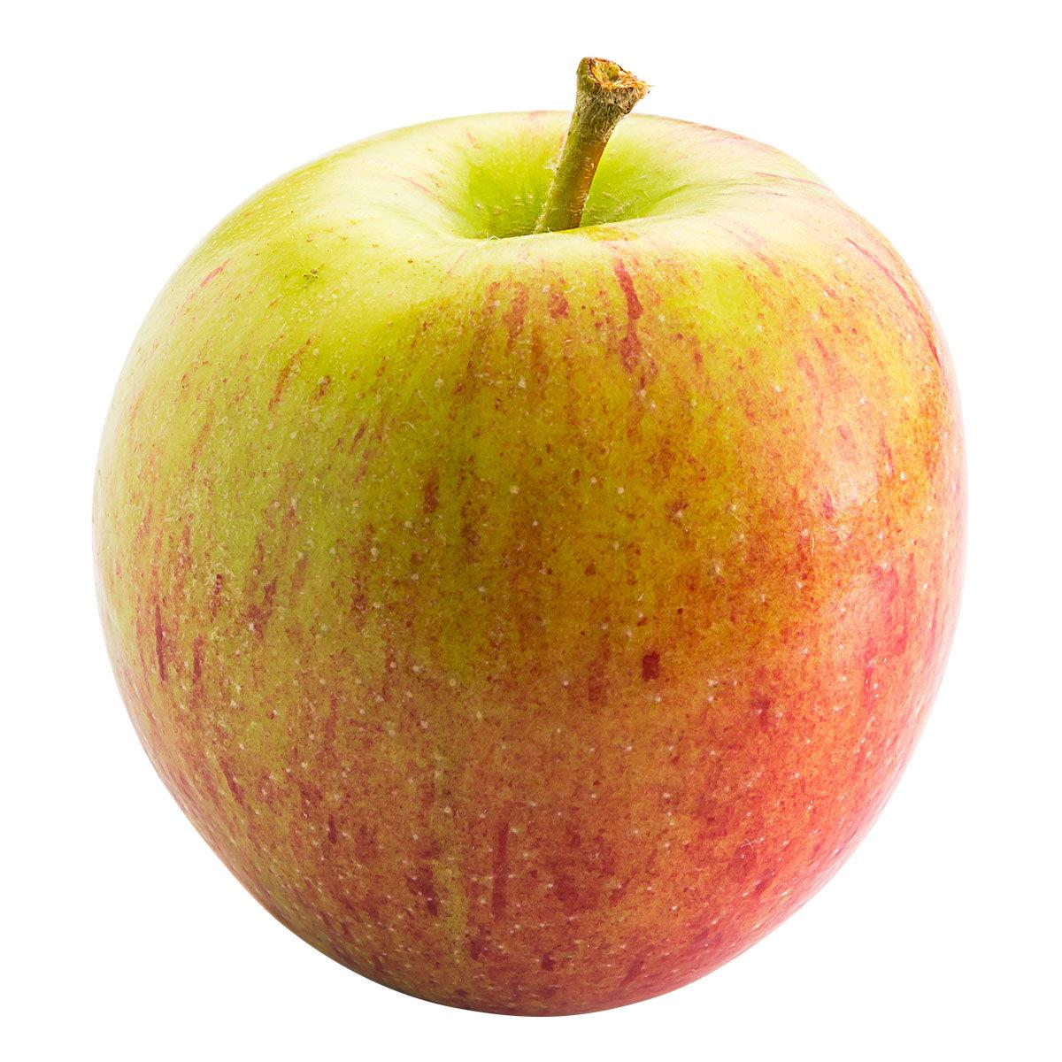 Zwergobst Apfel Delicado, im ca. 28 cm-Topf | #3