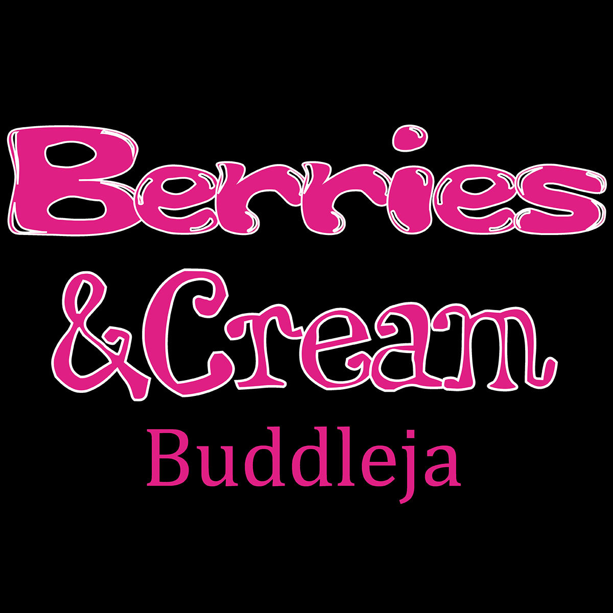 Schmetterlingsflieder Berries and Cream®,  im ca. 19 cm-Topf | #3