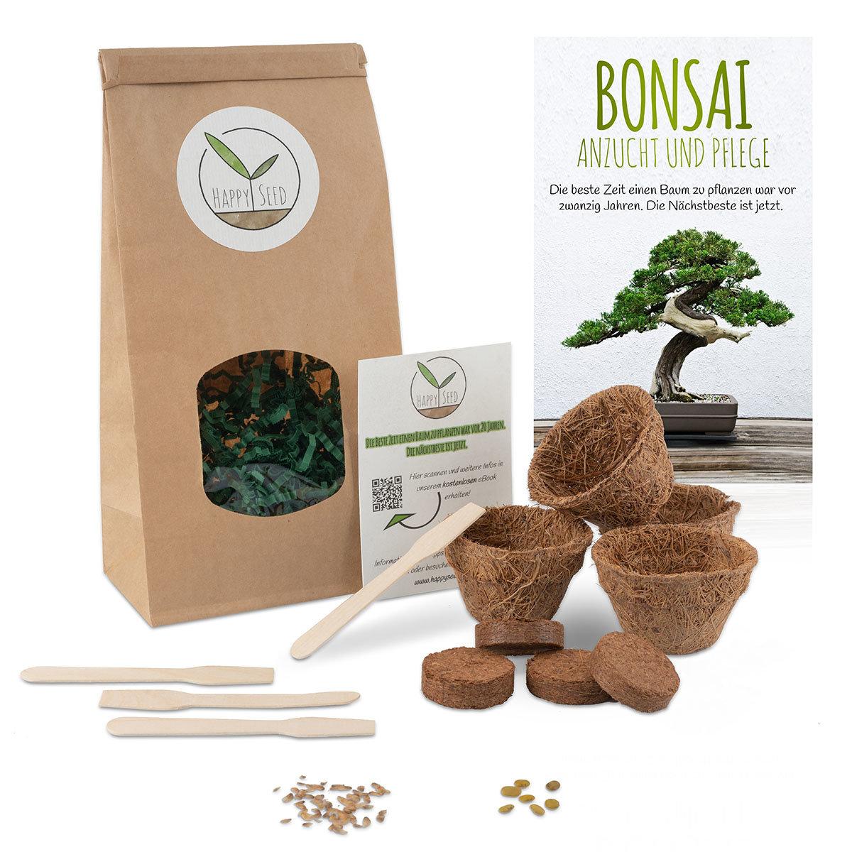 Bonsai Starter Kit Anzuchtset   #3