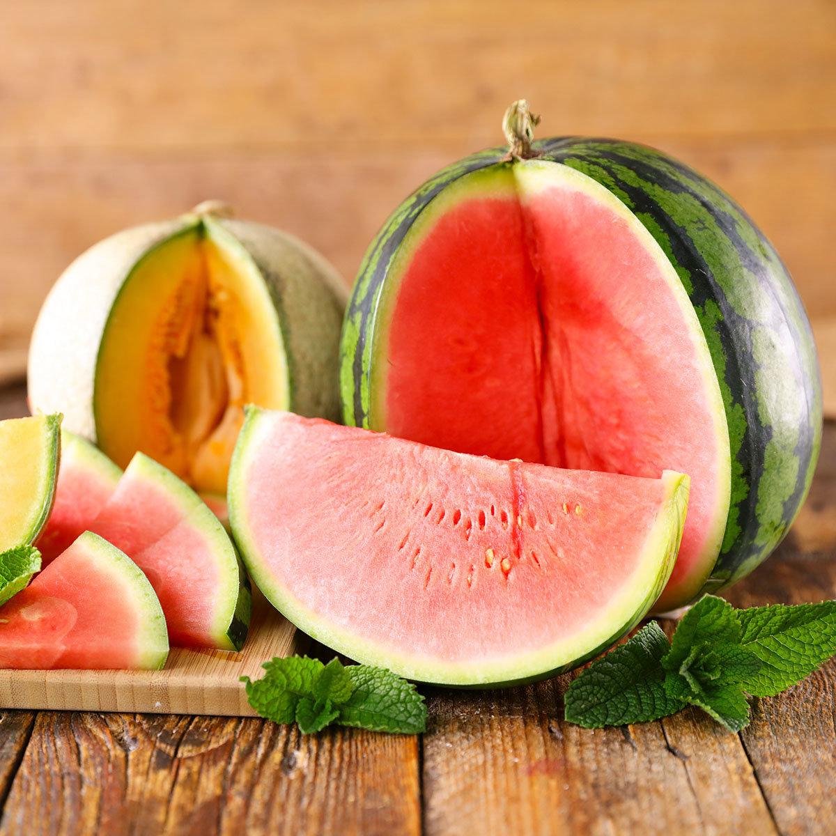Mini-Wassermelonenpflanze Mini Love, veredelt, im ca. 12 cm-Topf | #3
