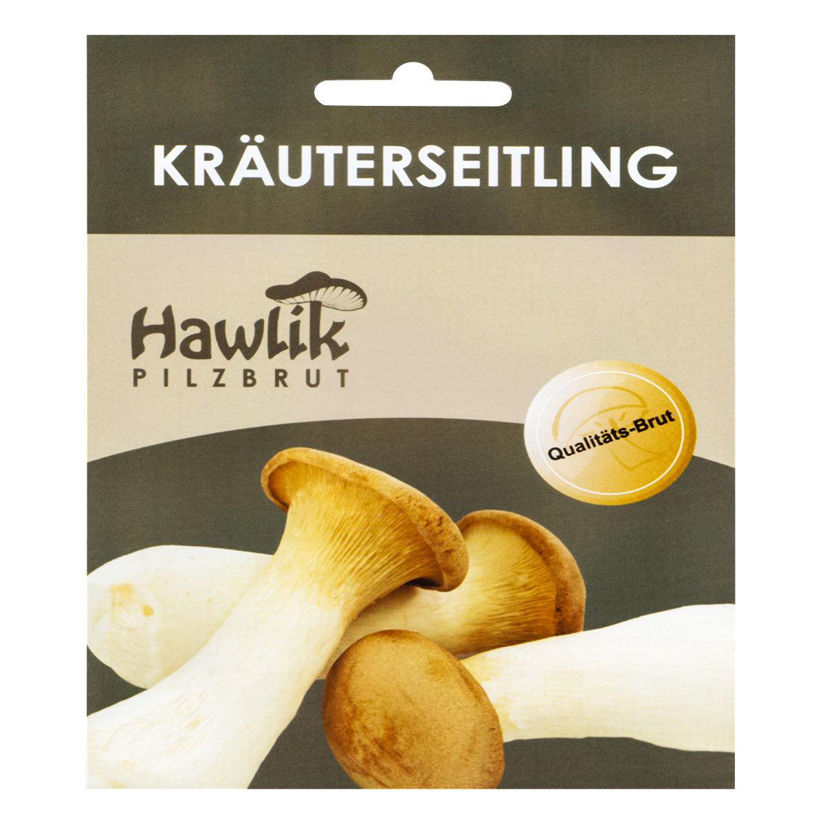 Dübel-Pilzkultur Kräuterseitling | #3