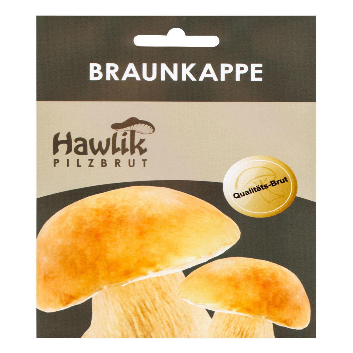 Dübel-Pilzkultur Braunkappe | #3