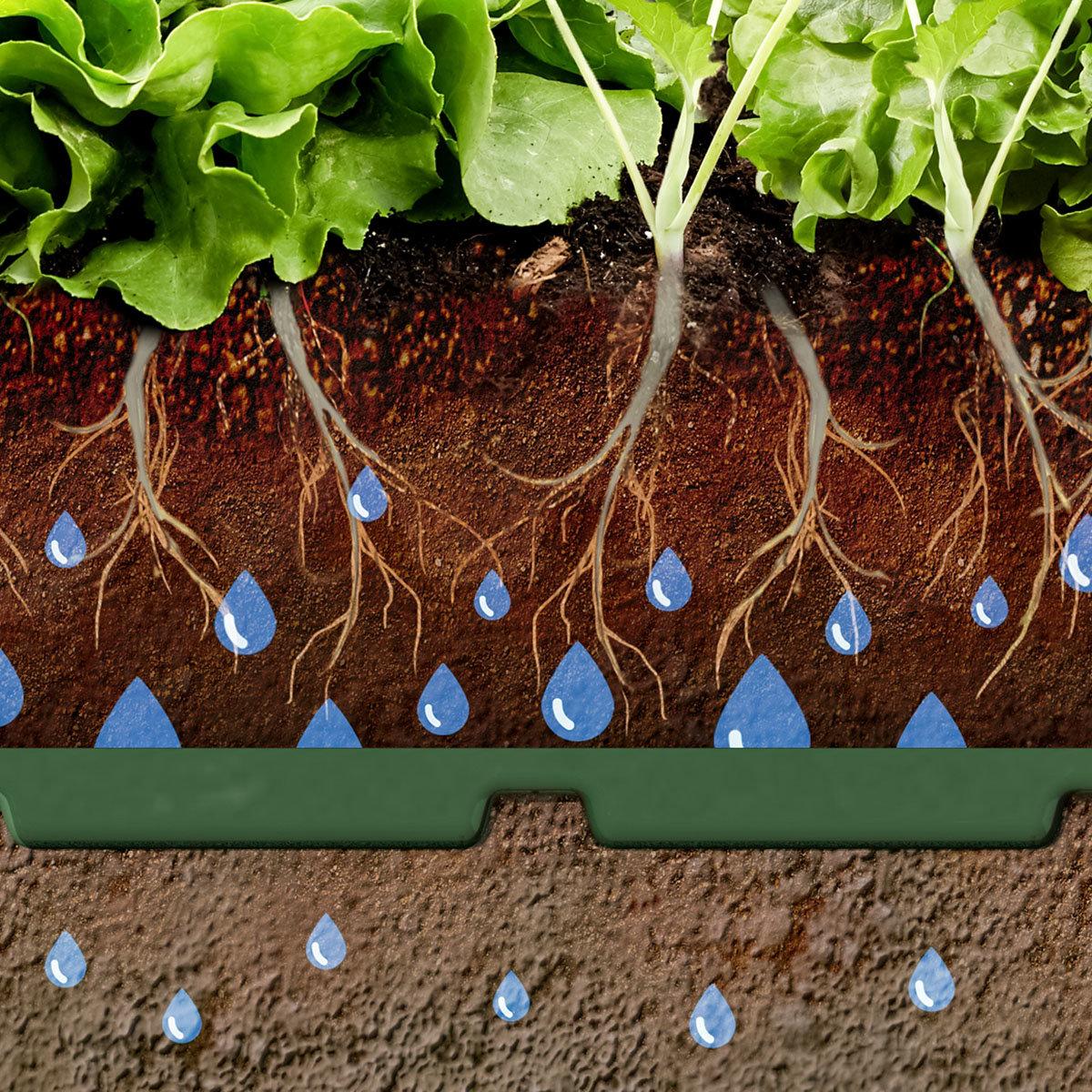 Hochbeet Bewässerungshilfe Flora, 10er-Set | #3