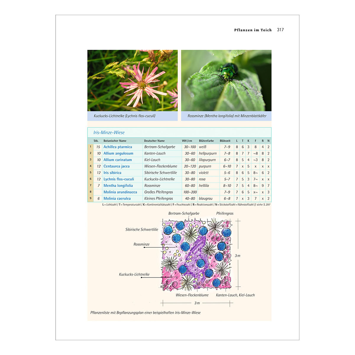 Handbuch Wasser im Garten | #3
