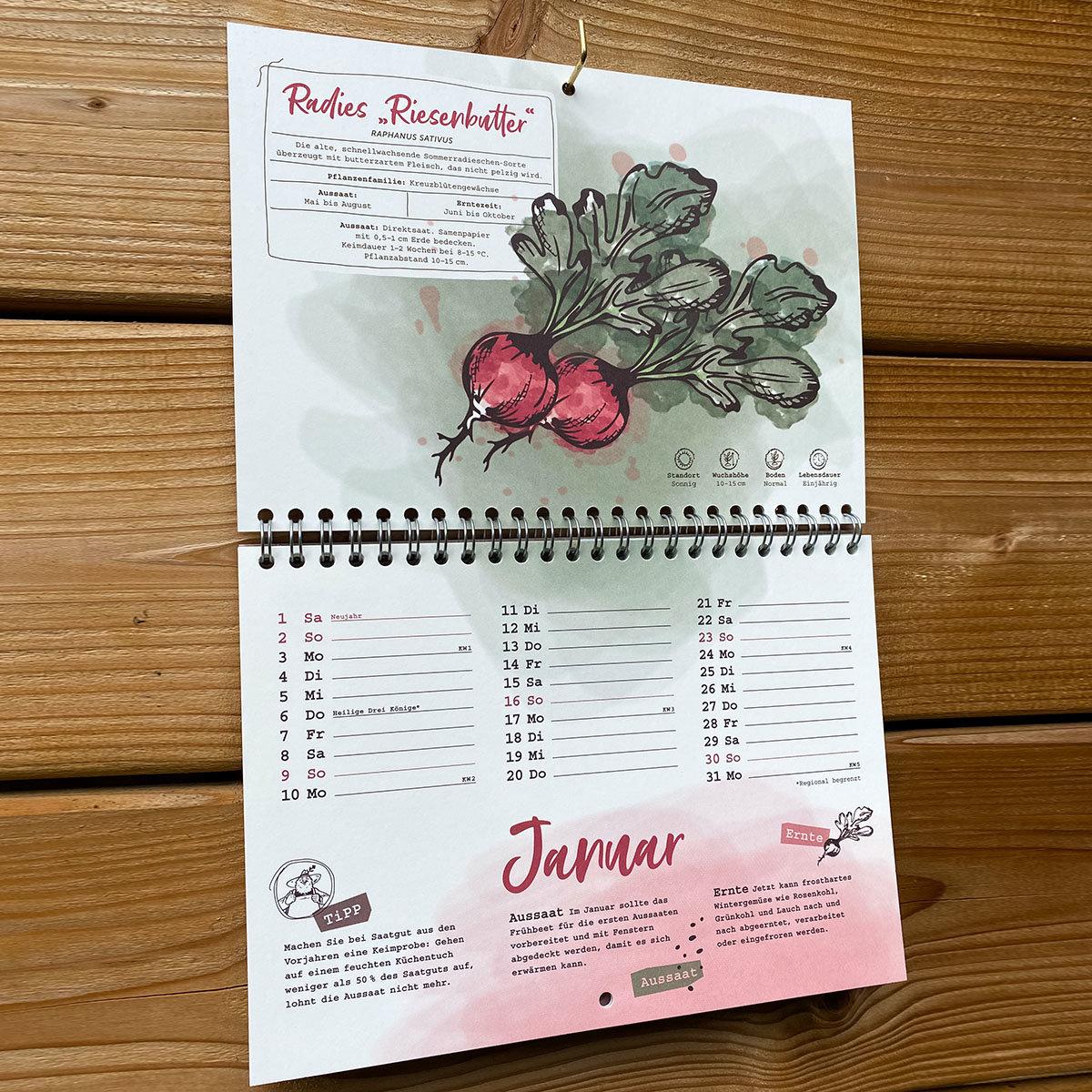 Einpflanzbarer Kalender - Historisches Saatgut   #3
