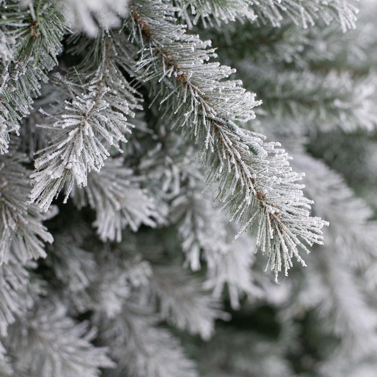 Künstlicher Weihnachtsbaum Fichte, Schneeoptik, 180 cm   #3