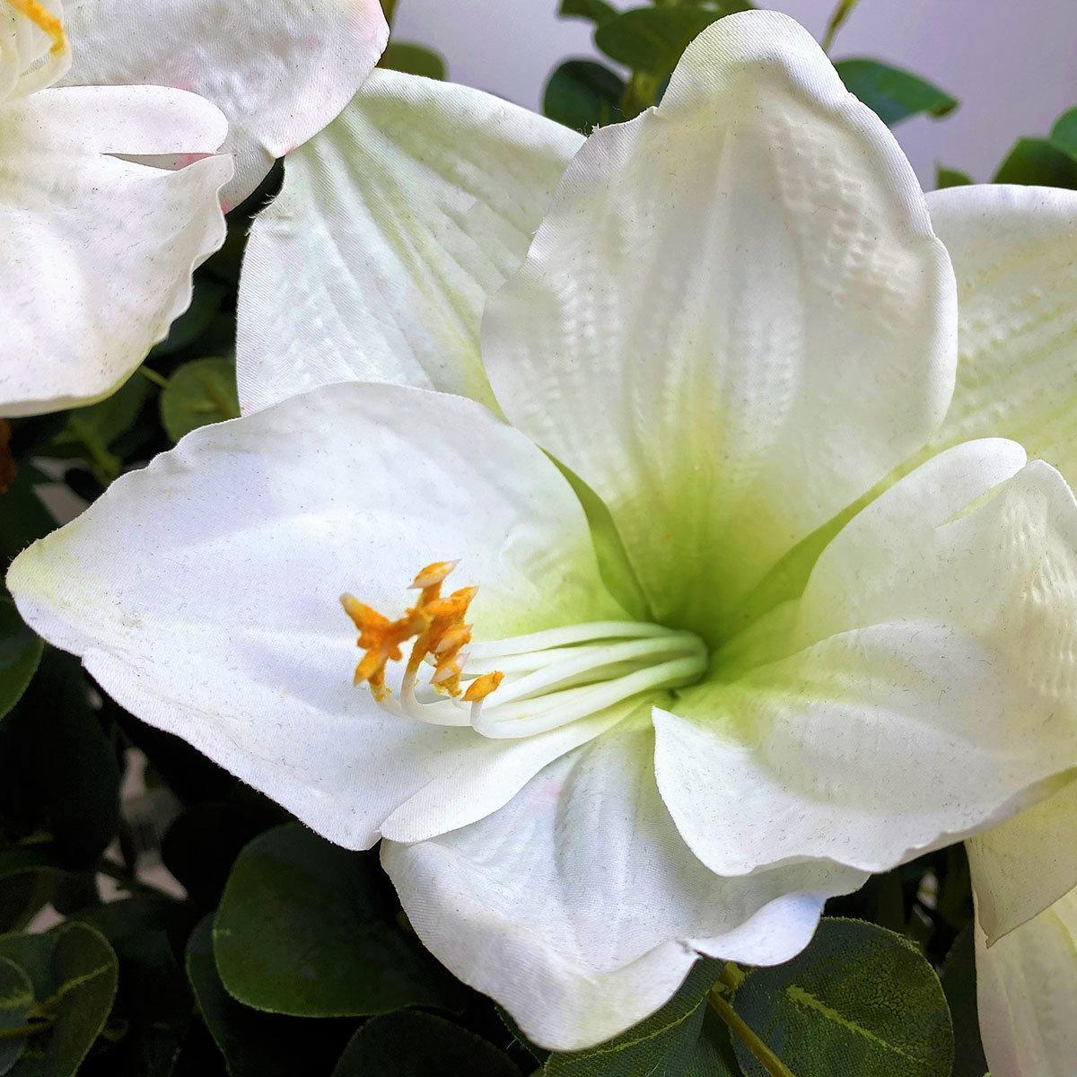 Kunstpflanze Amaryllis, weiß   #3