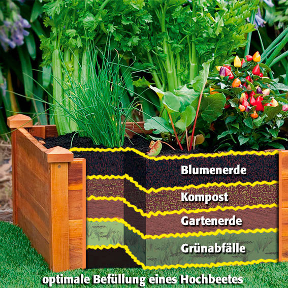 Hochbeet Klassik Extra Lang Akazienholz 240x60x20 Cm Online Kaufen
