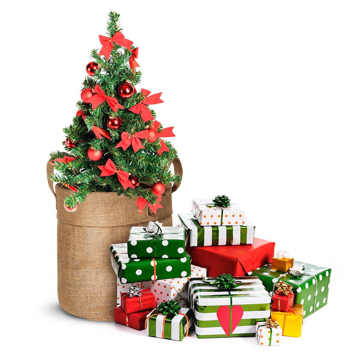 Weihnachtsbäumchen im Jute-Anzuchtbeutel, inkl. 6 Liter Erde und Weihnachtskarte | #4