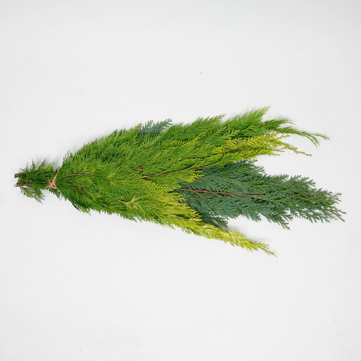 Koniferen-Handbund, grün 350 g   #4