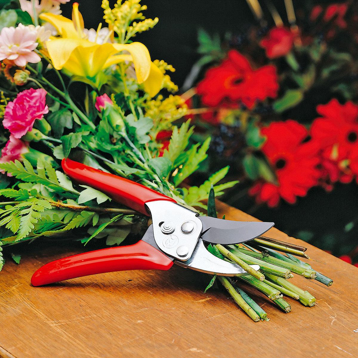 Gartenschere Aktion RR-EN | #4