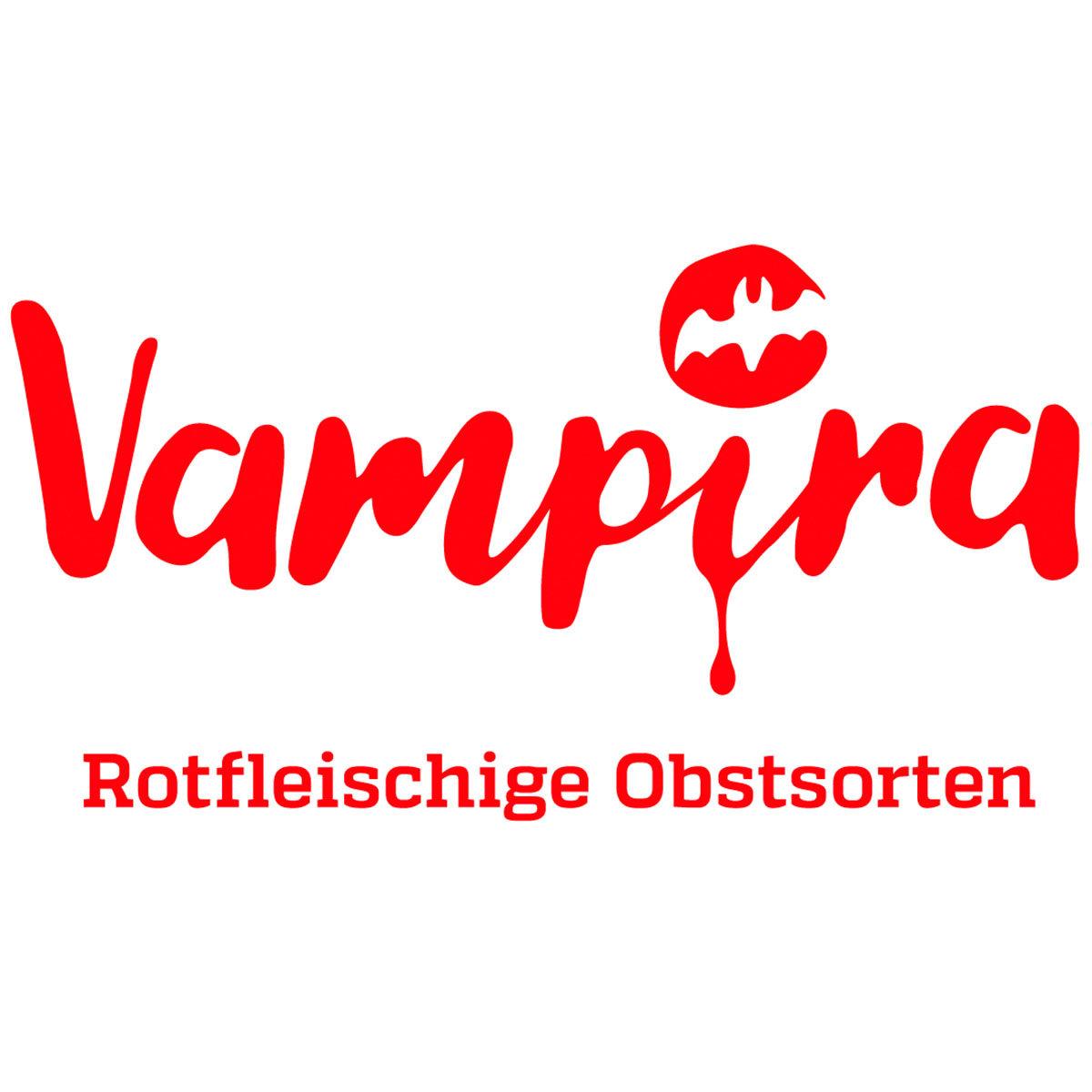 Apfel Vampira, im ca. 23 cm-Topf   #4