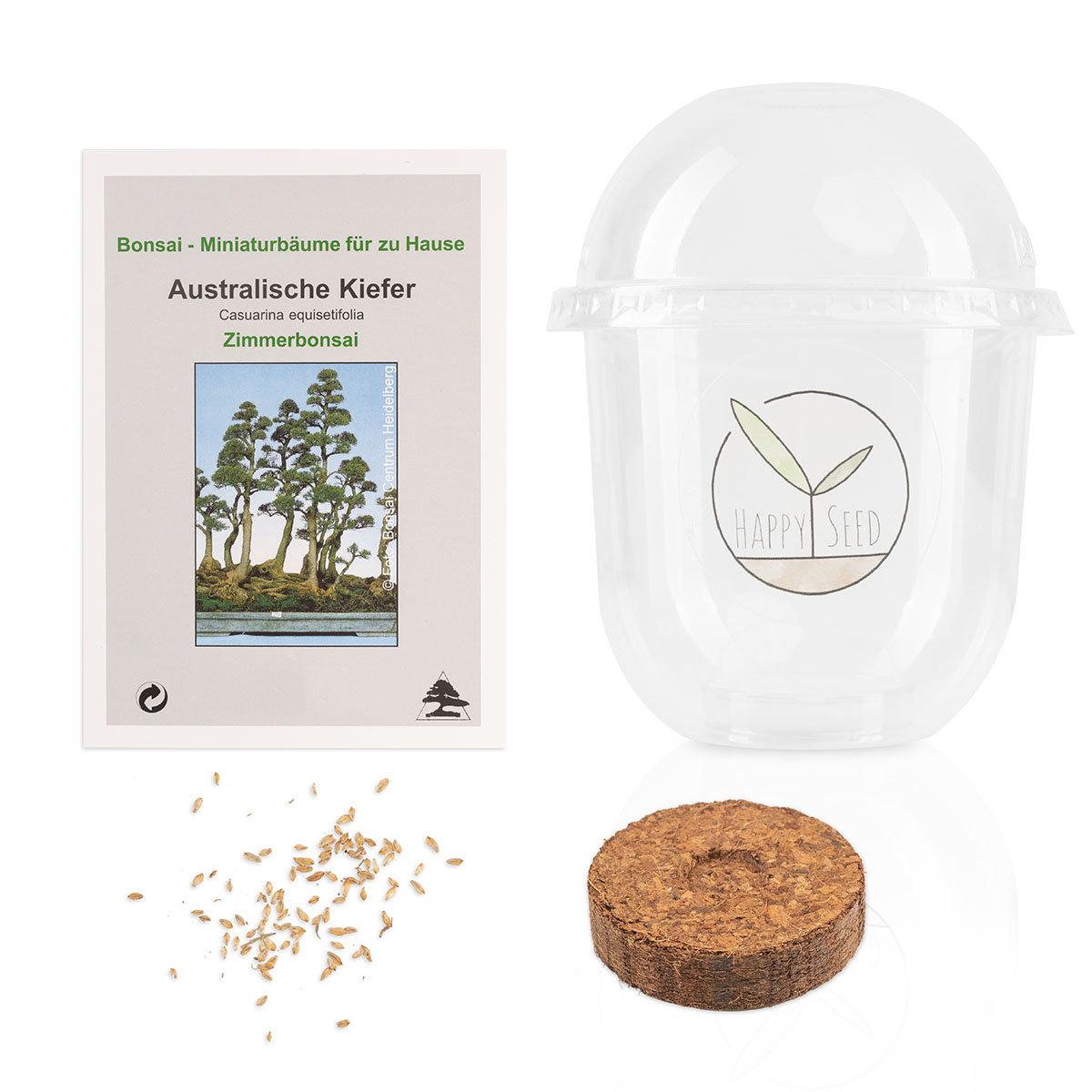 Bonsai Starter Kit Australischen Kiefer Grow2Go   #4