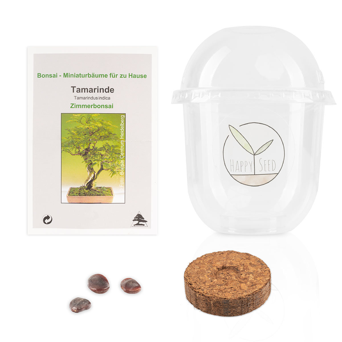 Bonsai Starter Kit Tamarinde Grow2Go | #4