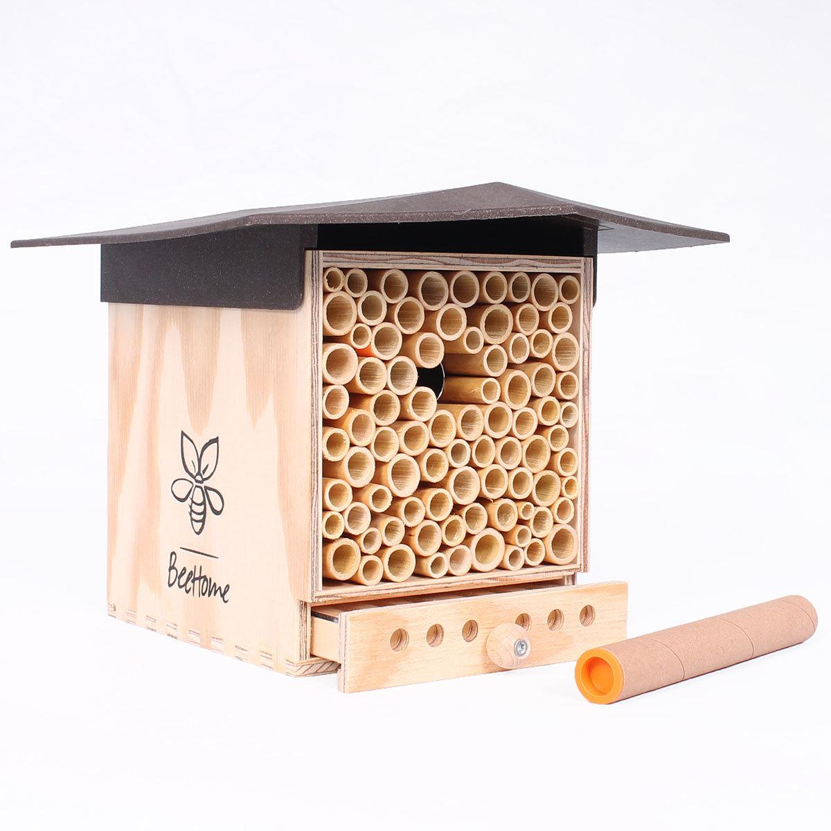 Insektenhotel BeeHome Observer mit Gutschein für Mauerbienenkokons | #4