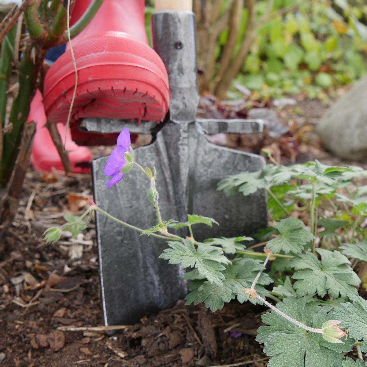 Beetspaten mit Tritt, 109 cm | #4