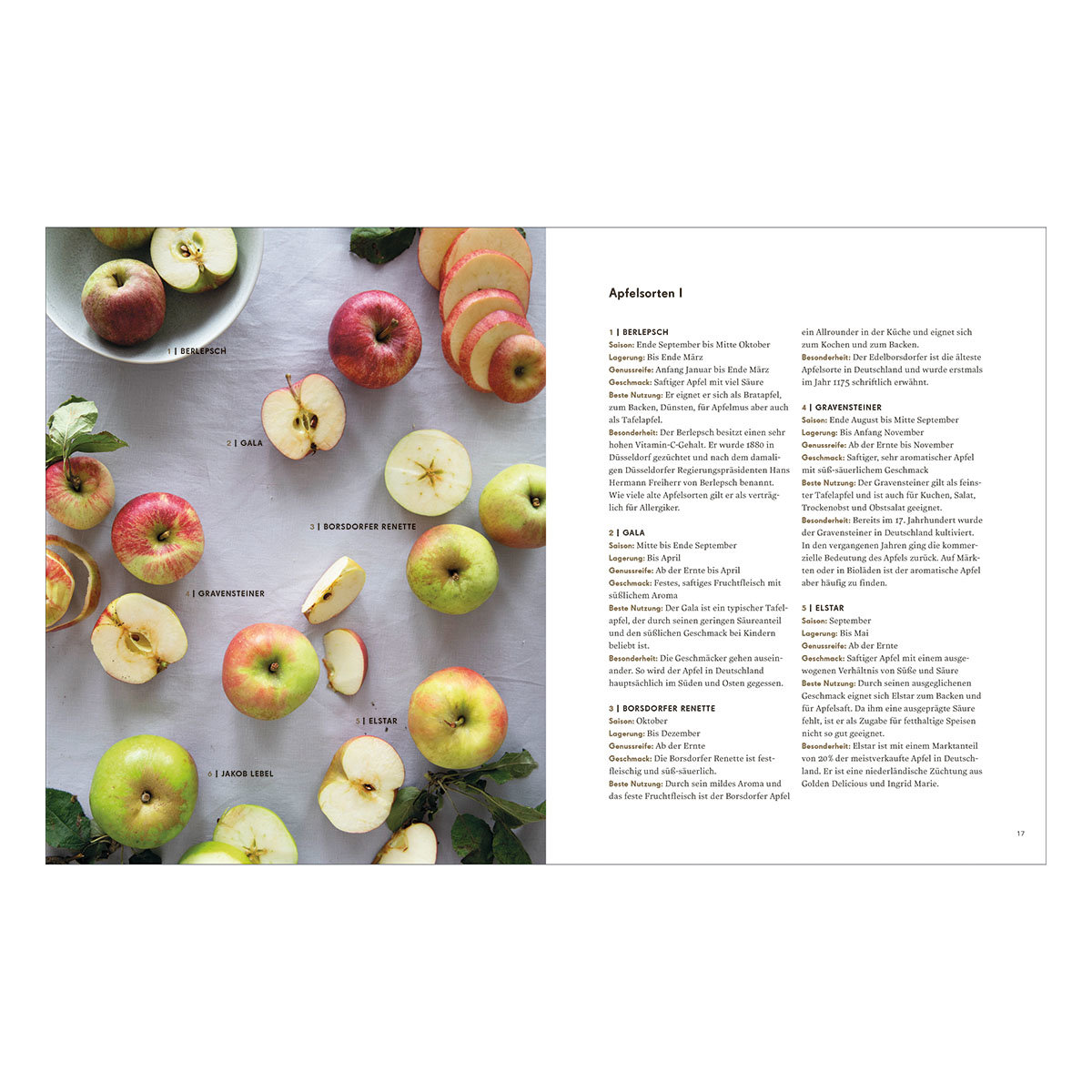 Apfelküche | #4