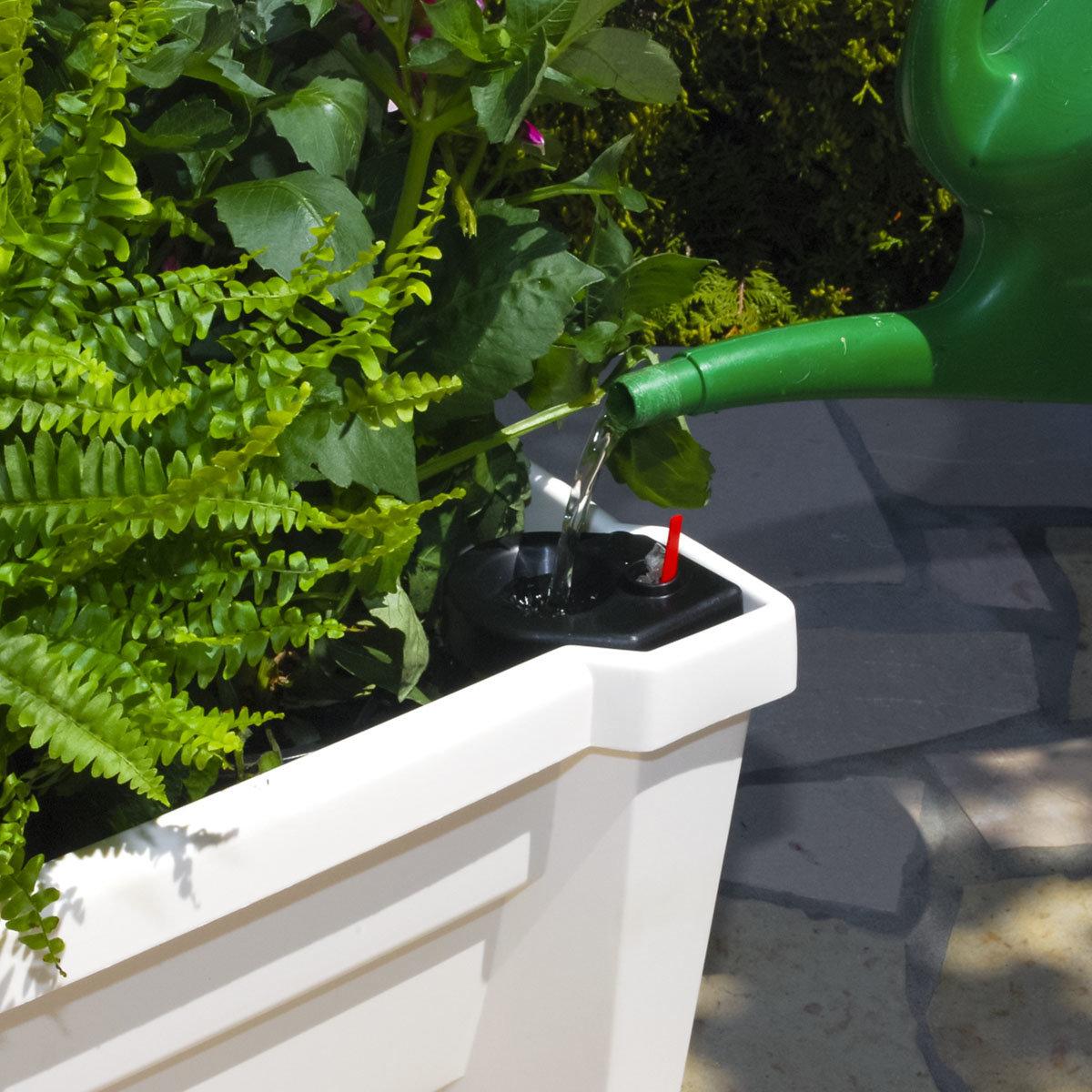 Pflanzkasten mit Bewässerungssystem und modularem Spaliere, weiß | #4