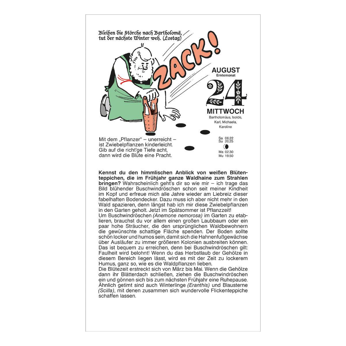 Schmuckausgabe Der Grüne Wink® | #4