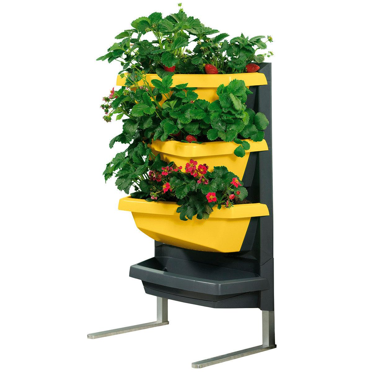 JUWEL Vertical Garden Grundelement, safran | #5