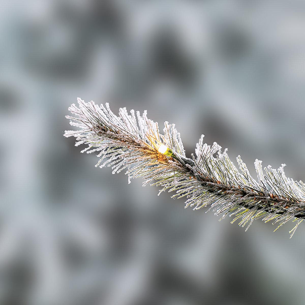 Künstlicher Weihnachtsbaum Fichte, Schneeoptik, mit LED-Beleuchtung, 210 cm   #5