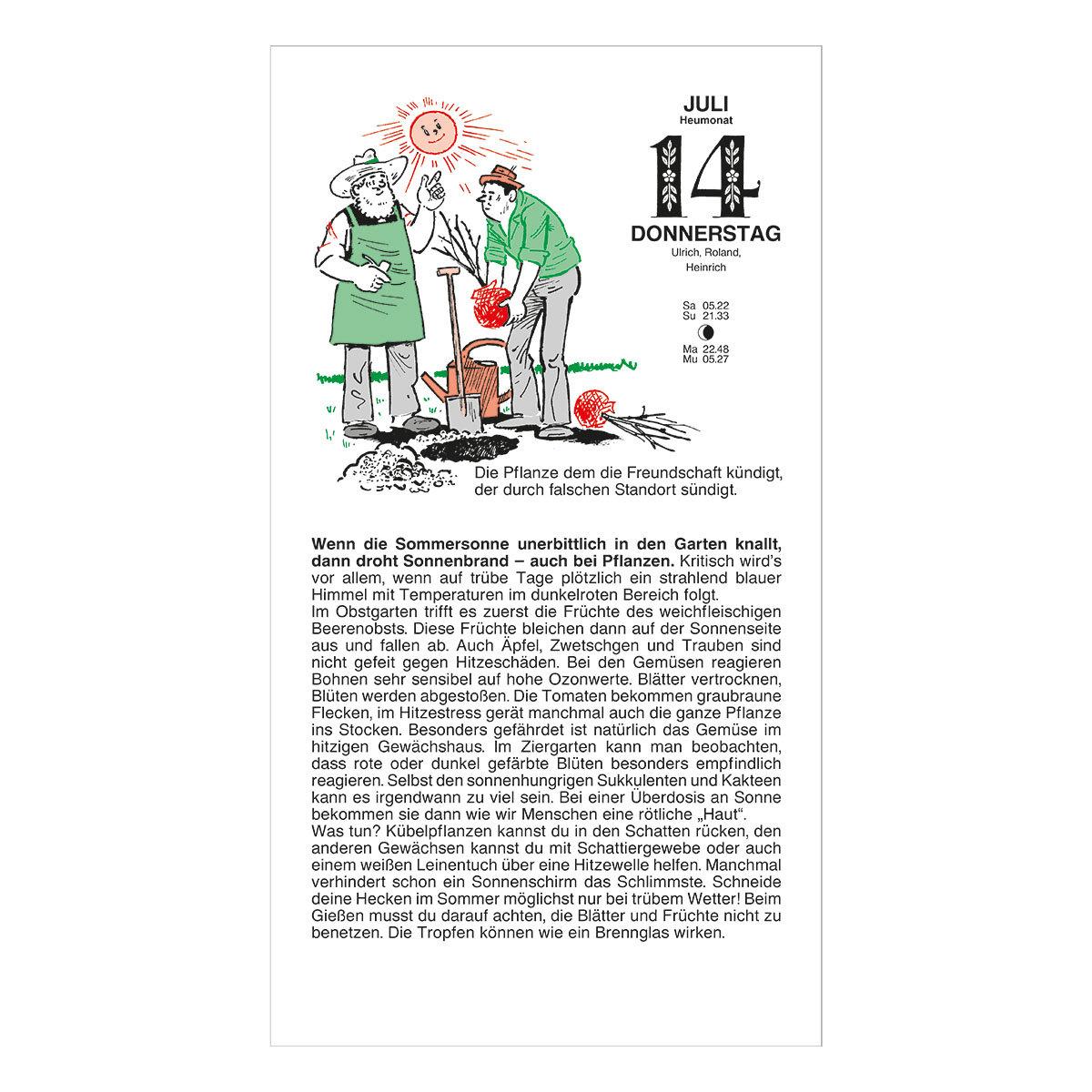 Schmuckausgabe Der Grüne Wink® | #5