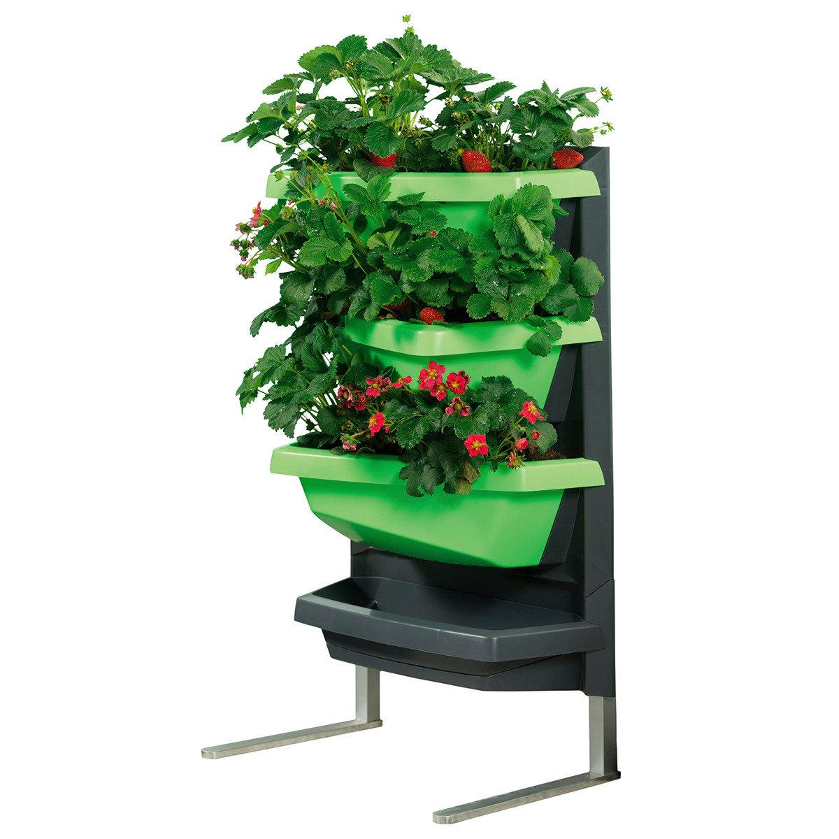JUWEL Vertical Garden Grundelement, limette | #6