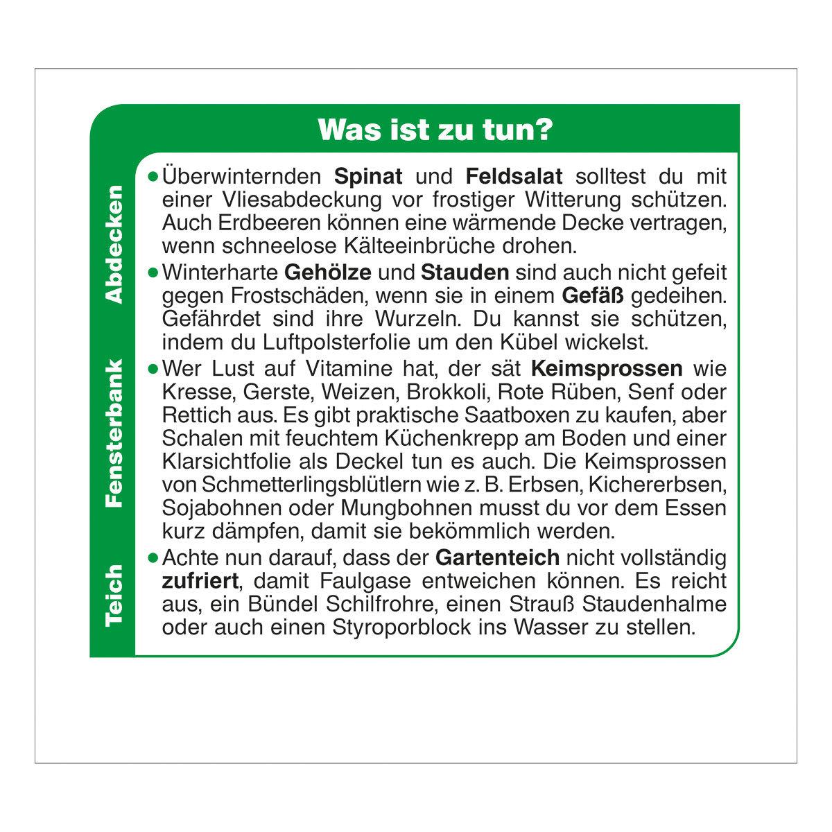 Abreißkalender Der große Grüne Wink®   #6