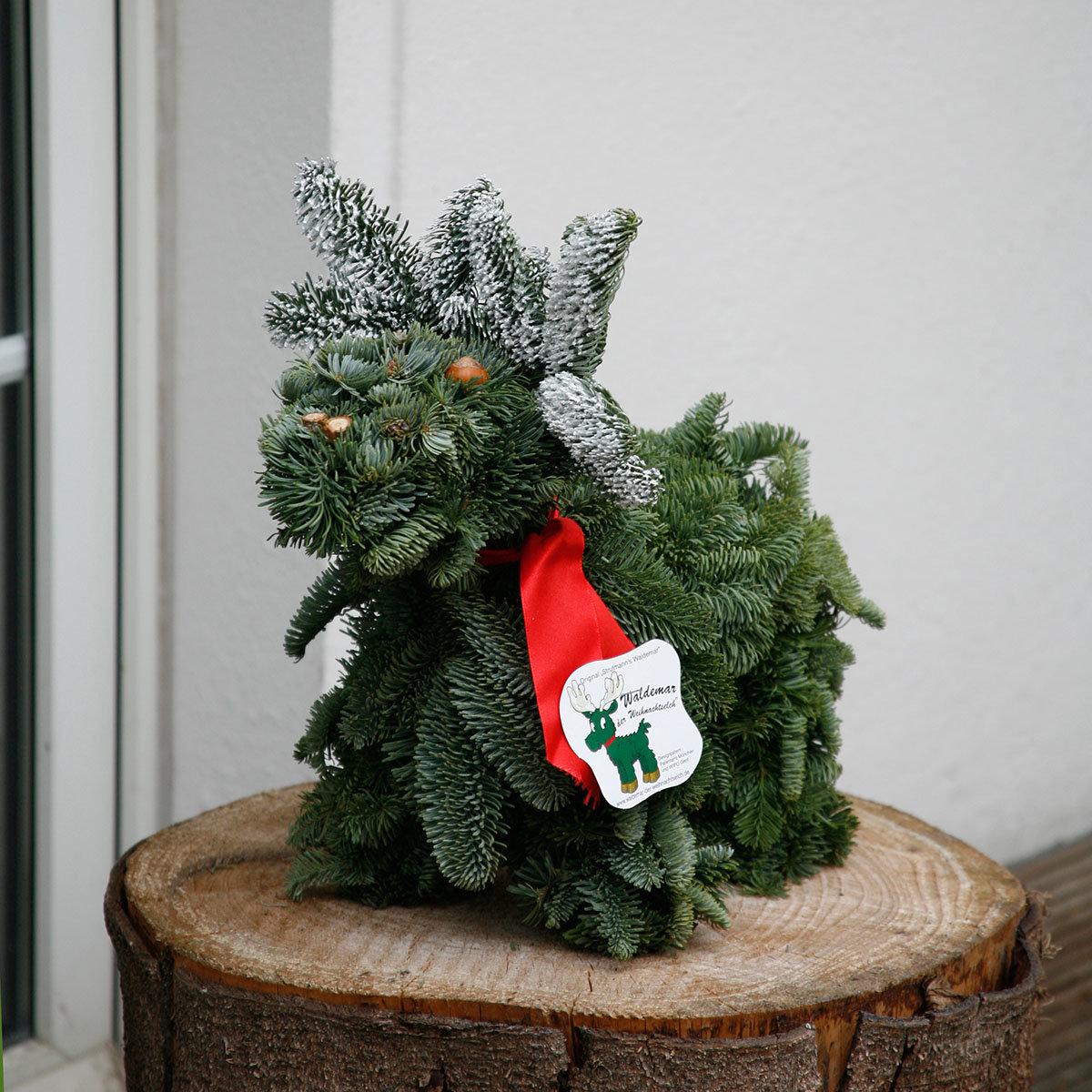 Waldemar der Weihnachtselch | #7