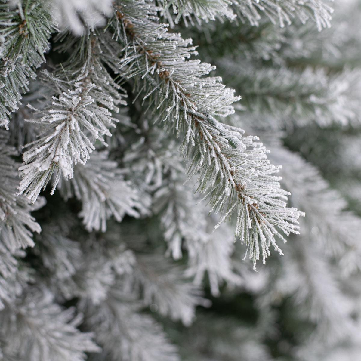 Künstlicher Weihnachtsbaum Fichte, Schneeoptik, mit LED-Beleuchtung, 210 cm   #7