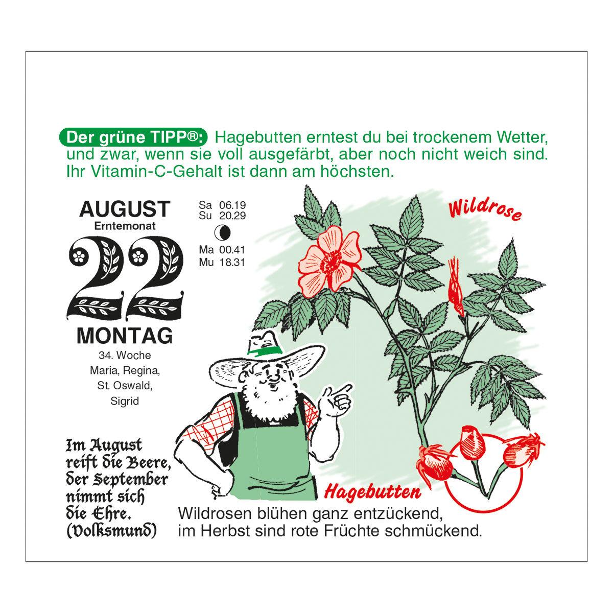 Abreißkalender Der große Grüne Wink®   #7