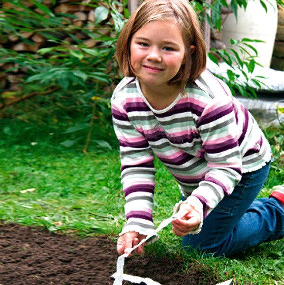 Saatband 6 m Sortiment Garten- und Schnittastern | #8