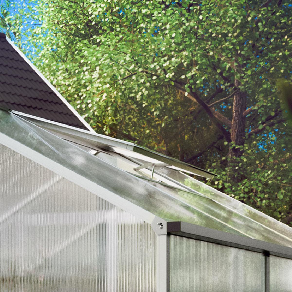 KGT Gewächshaus Tulpe III 233 x 323 cm, moosgrün | #8