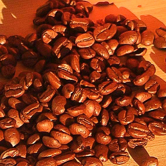 Genießer-Set Allgäuer Bergkaffee mit 4 Portionen Kaffee | #8
