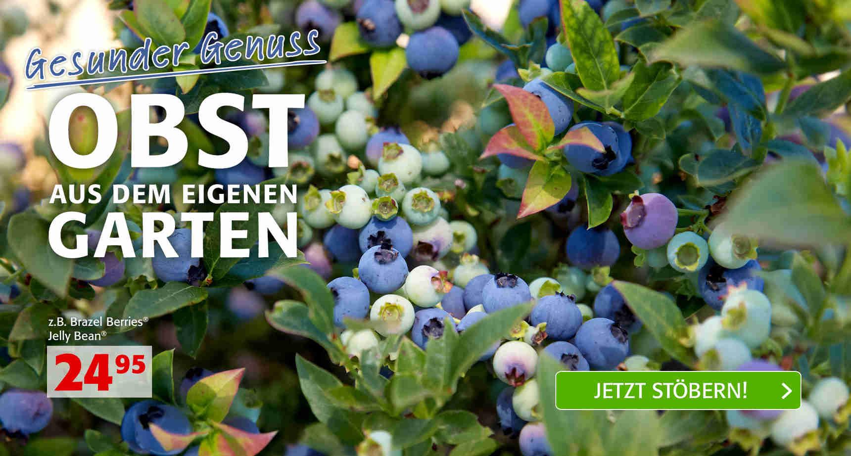 Poetschke Gartenversand Image Mag