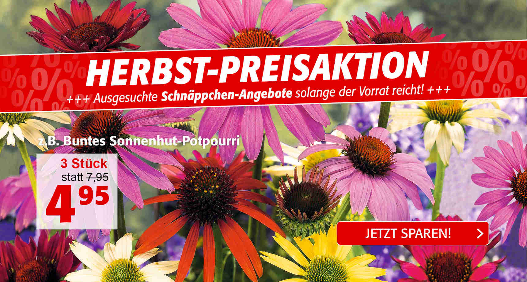 +++ (1) Herbstpreisaktion Sale 1 +++ - 3