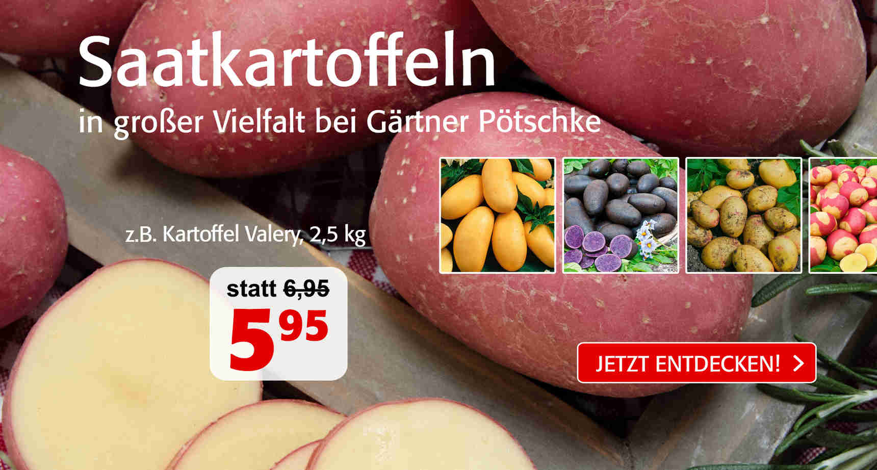 +++ (3) Kartoffeln +++ - 3