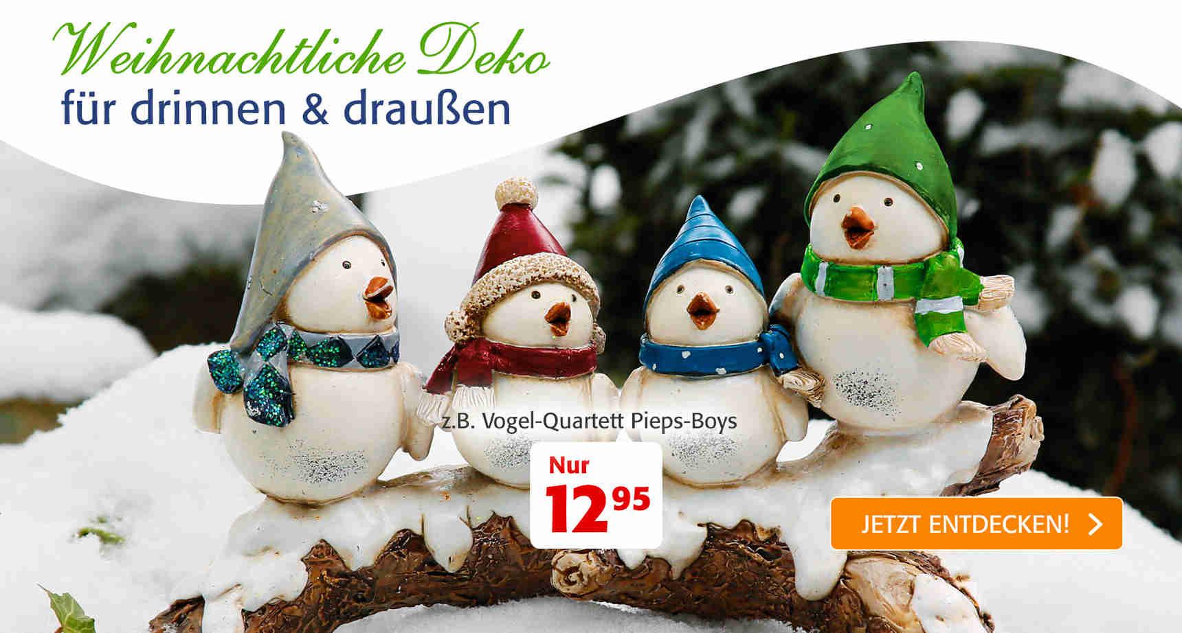 +++ (1) Weihnachtliche Deko +++ - 1