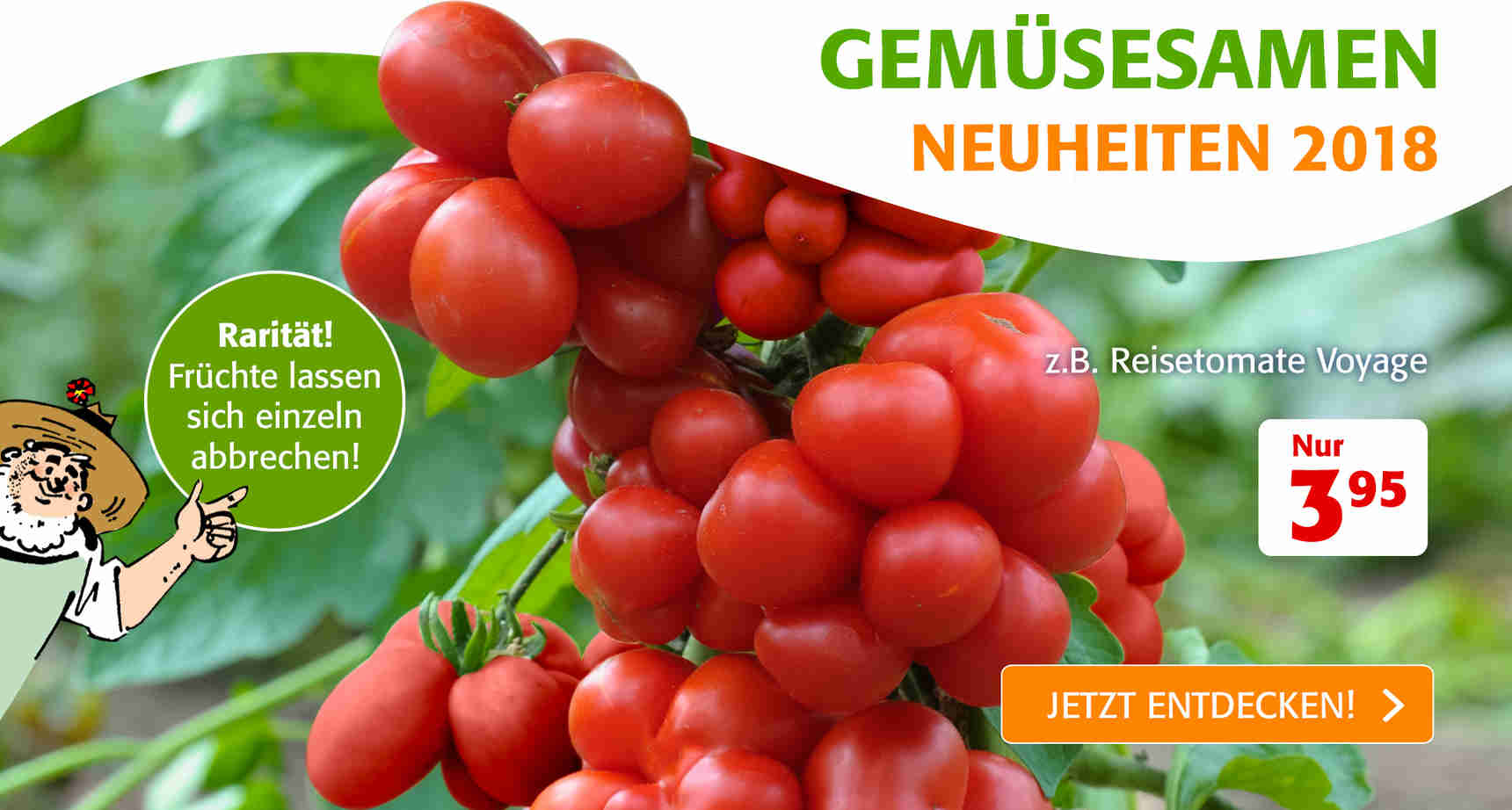 +++ (1) Gemüsesamen +++ - 1