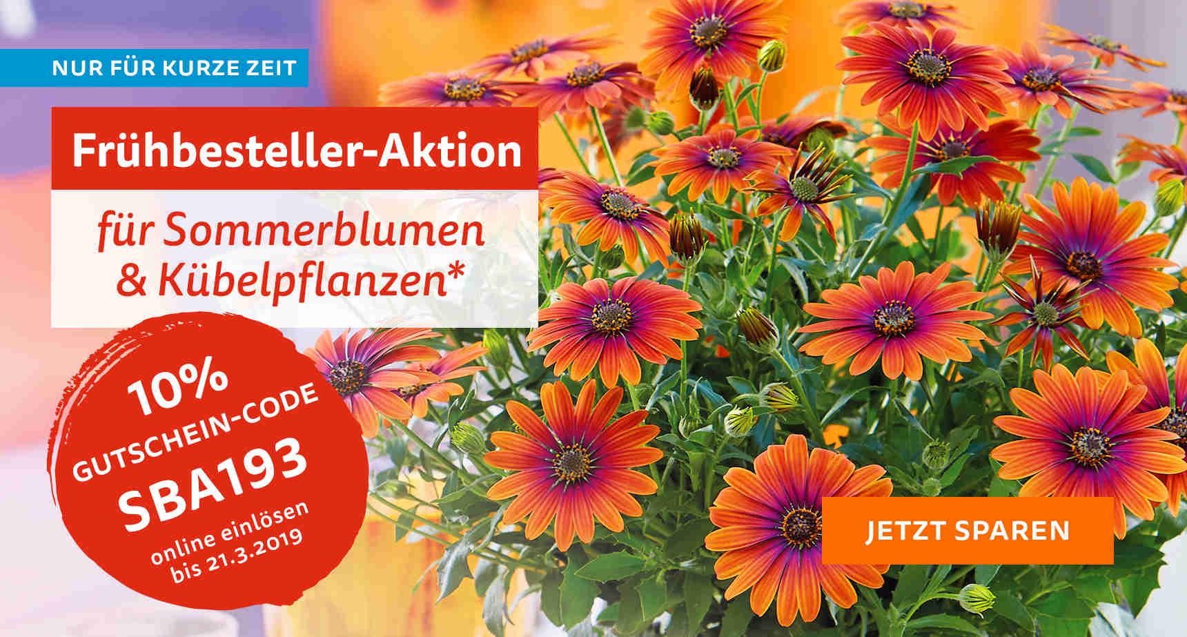 +++ (1) Sommerblumen +++ - 3