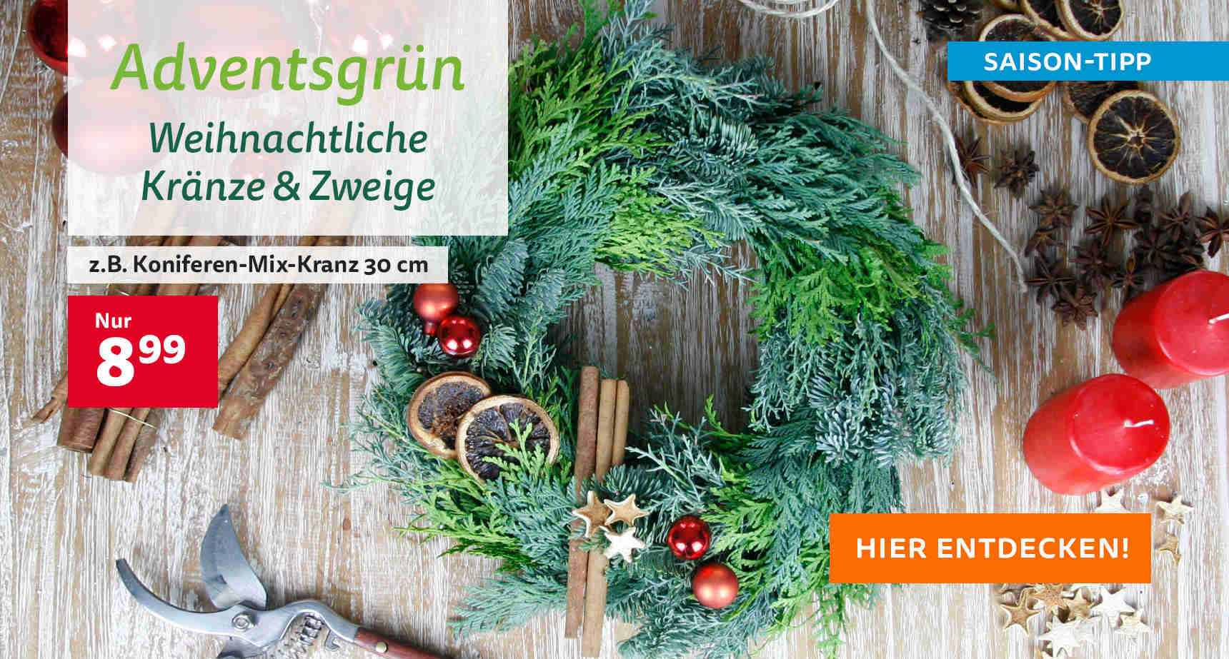 +++ (2) Adventsgrün +++ - 3