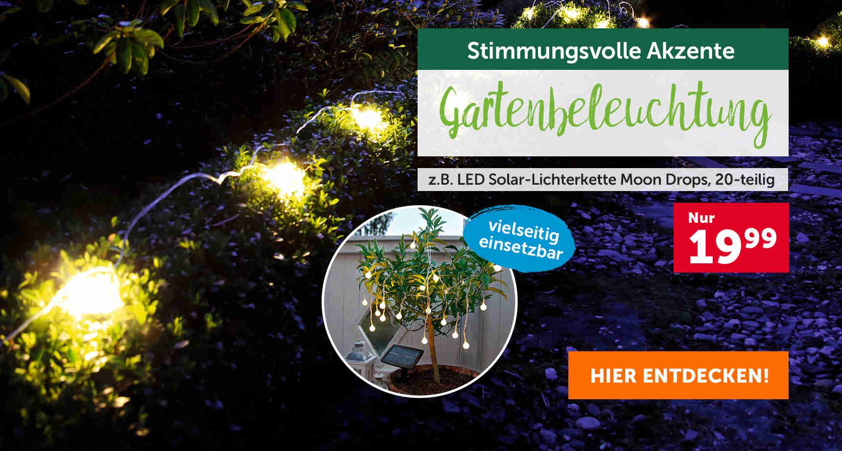 +++ (2) Gartenbeleuchtung +++ - 3