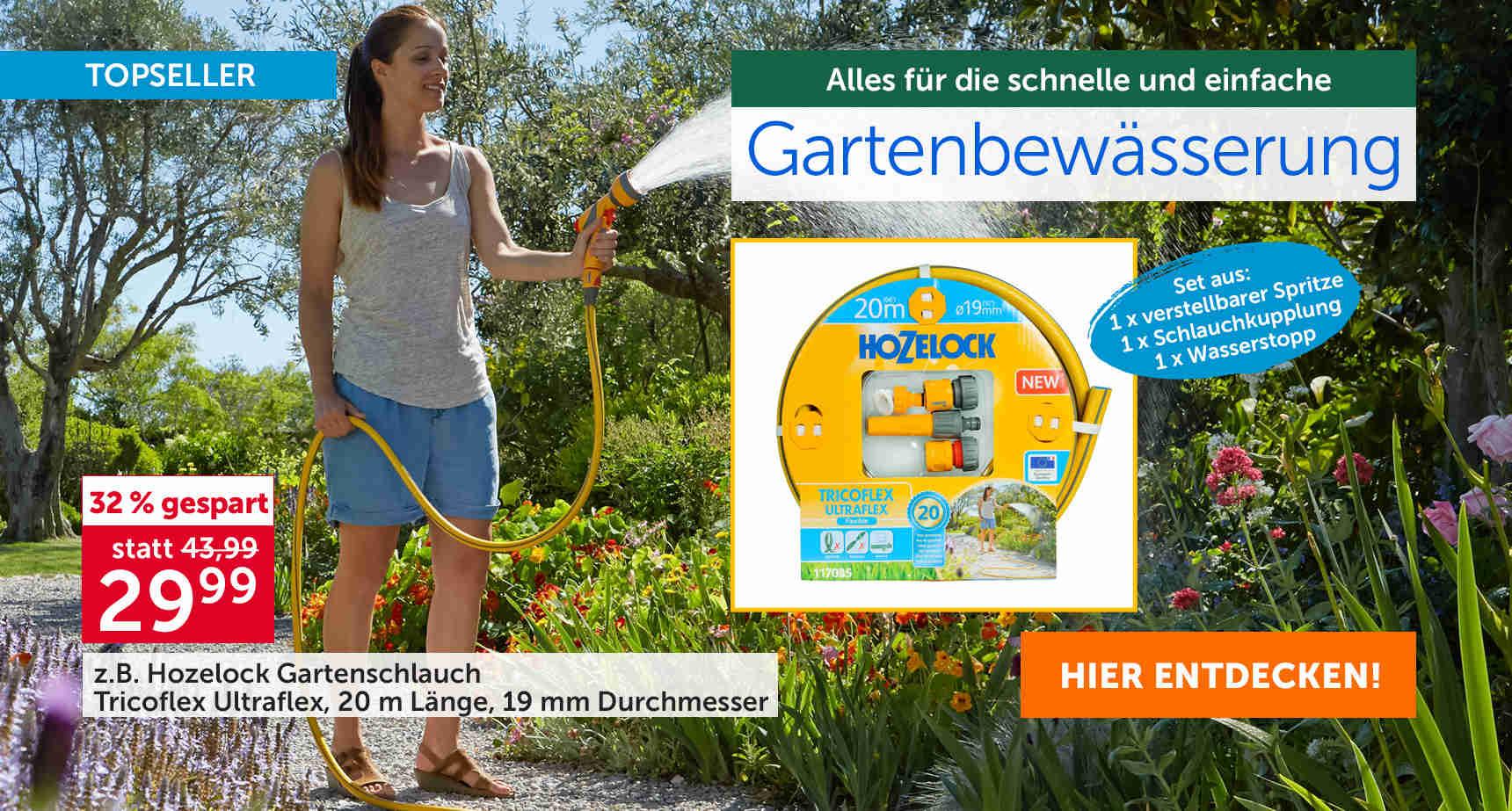 +++ (2) Gartenbewässerung +++ - 3