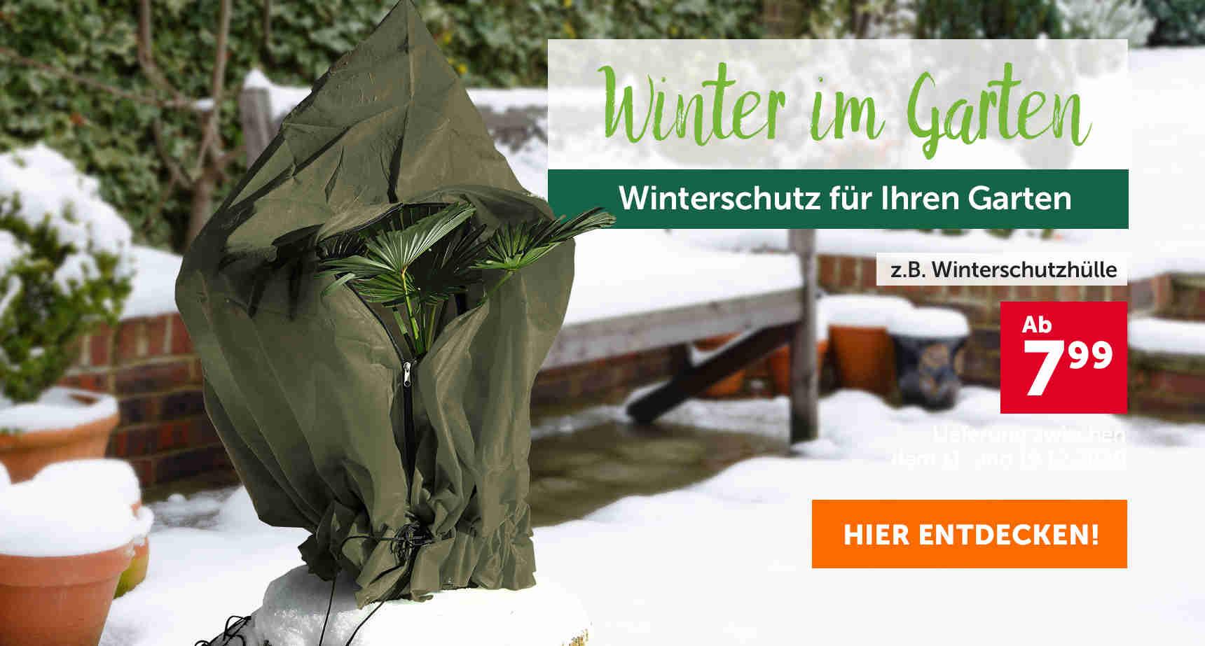 +++ (2) Winter im Garten +++ - 3